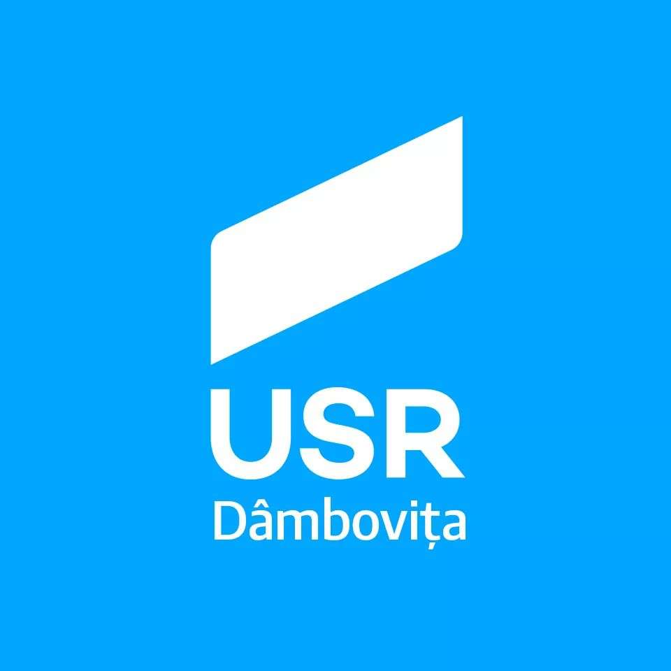 Usr Dâmbovița: Primari în două tururi, respins la Senat - de ce este important